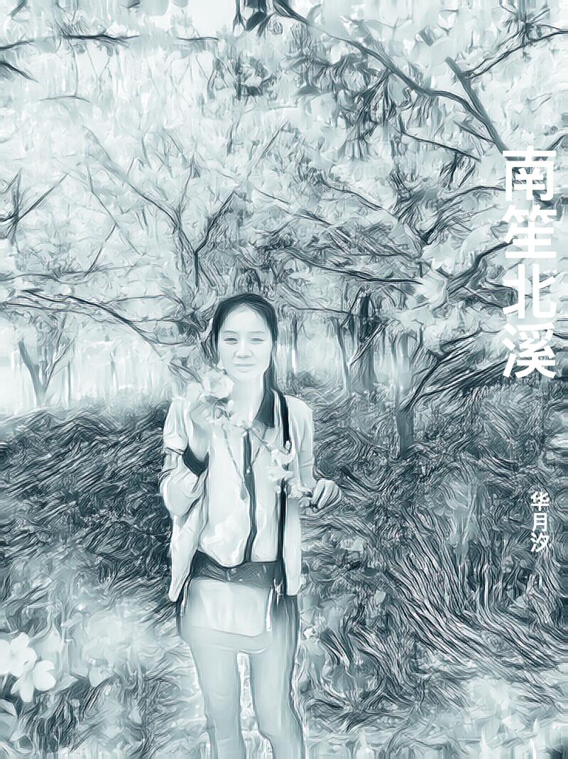 南笙北溪-花溪小说