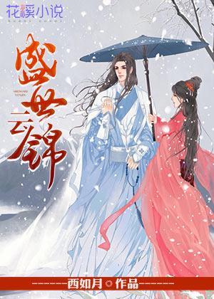 盛世云锦-花溪小说