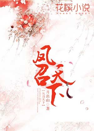凤召天下-花溪小说