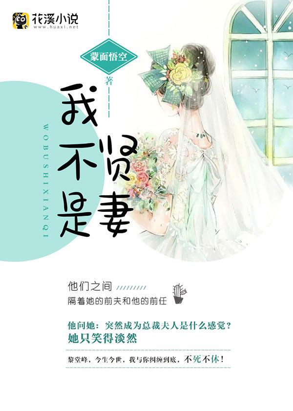 我不是贤妻-花溪小说